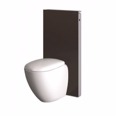 Image of   Geberit Monolith cisternemodul til gulvstående toilet Back-to-Wall. Umbra